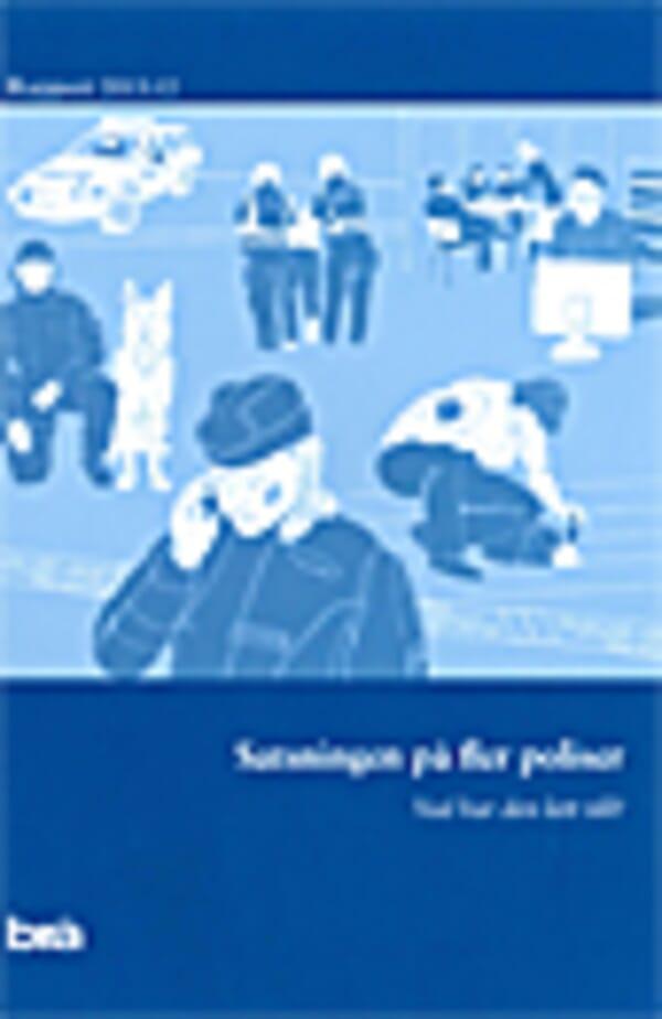 Satsningen på fler poliser. Brå rapport 2013:12